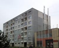 mateja-bela-85-2