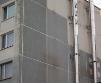 mateja-bela-85-1